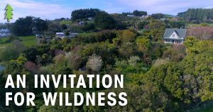 An Invitation for Wildness short film
